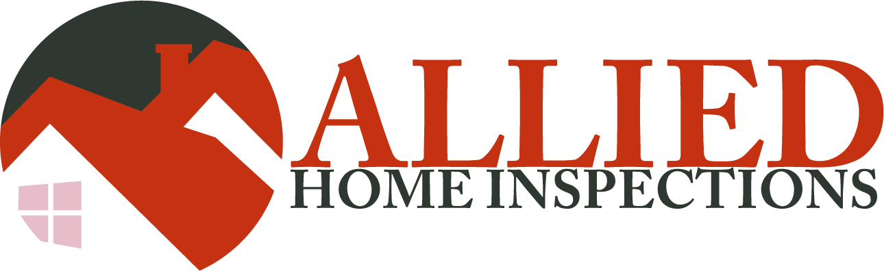 EZ Home Inspection Websites Style 3